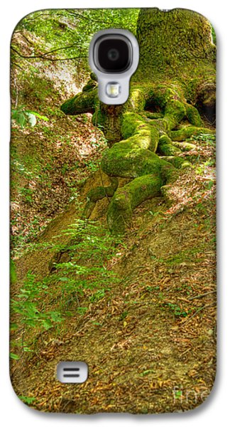 Roots Of A Tree At Ciucaru Mare Forest Galaxy S4 Case by Gabriela Insuratelu