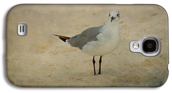 Gull Galaxy S4 Case