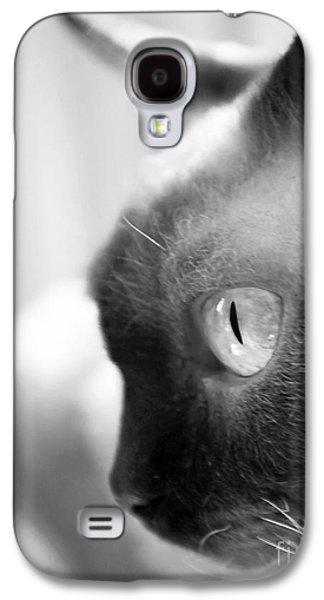 Seal Point Devon Rex Galaxy S4 Case