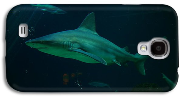 Shark Galaxy S4 Case