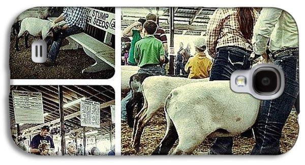Ohio Galaxy S4 Case - Sheep Show by Natasha Marco