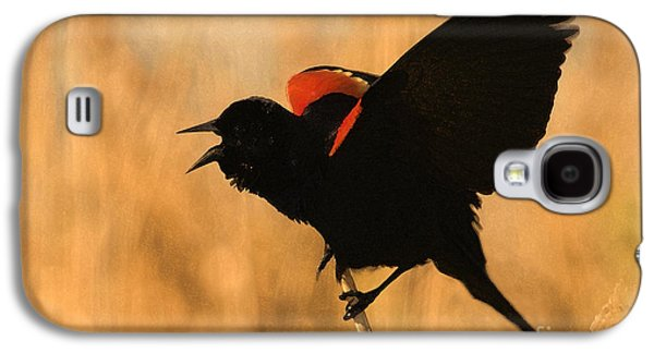 Singing At Sunset Galaxy S4 Case by Betty LaRue