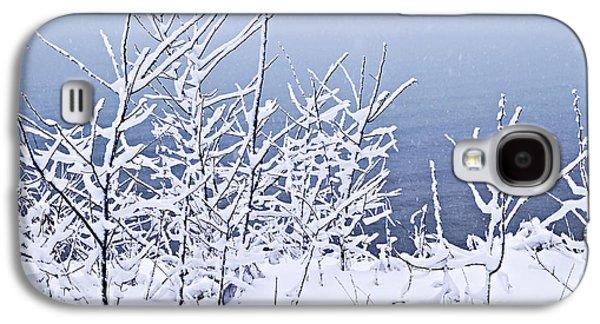 Snowy Trees Galaxy S4 Case by Elena Elisseeva