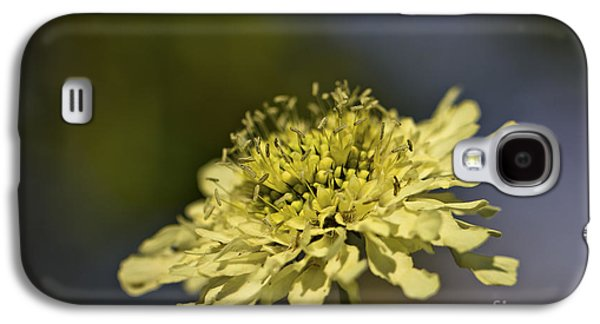 Soft Yellow. Galaxy S4 Case by Clare Bambers
