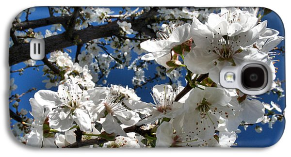 Spring Pear Blossoms 2012 Galaxy S4 Case by Joyce Dickens