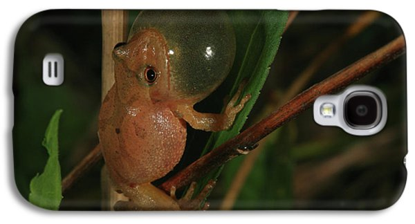 Spring Peeper Galaxy S4 Case by Bruce J Robinson