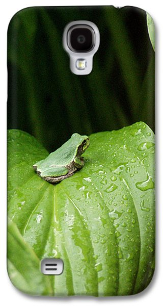 Spring Peeper Galaxy S4 Case by Jon Lord