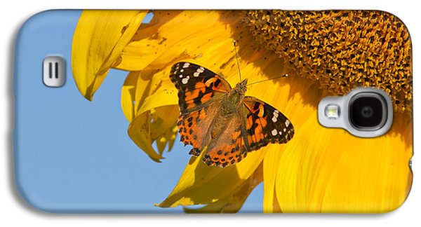 Summer Time Galaxy S4 Case by Mircea Costina Photography