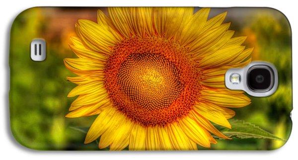 Thai Sunflower Galaxy S4 Case by Adrian Evans