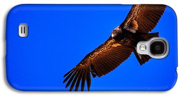 The California Condor Galaxy S4 Case by David Patterson