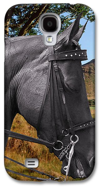 The Horse - God's Gift To Man Galaxy S4 Case by Christine Till