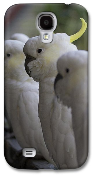 The Line-up Galaxy S4 Case by Douglas Barnard