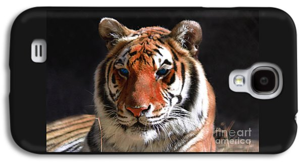 Tiger Blue Eyes Galaxy S4 Case by Rebecca Margraf