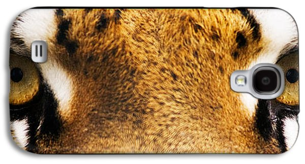 Abstract Nature Galaxy S4 Cases - Tiger eyes Galaxy S4 Case by Sumit Mehndiratta