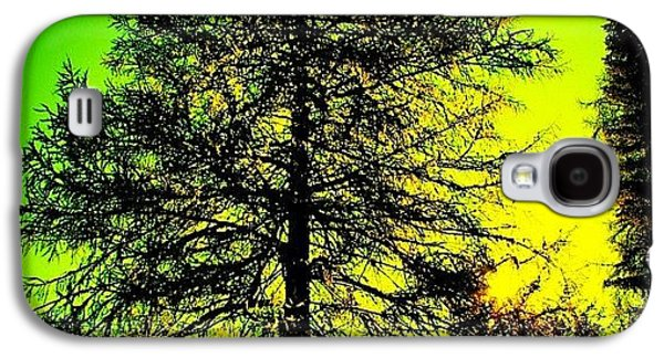 Cool Galaxy S4 Case - Tree by Luisa Azzolini