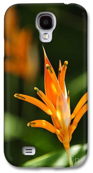 Tropical Orange Heliconia Flower Galaxy S4 Case by Elena Elisseeva