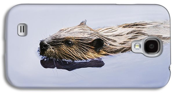 View Of Beaver, Chaudiere-appalaches Galaxy S4 Case
