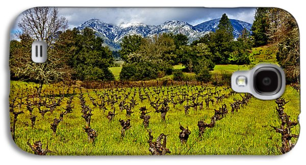 Vineyards And Mt St. Helena Galaxy S4 Case by Garry Gay