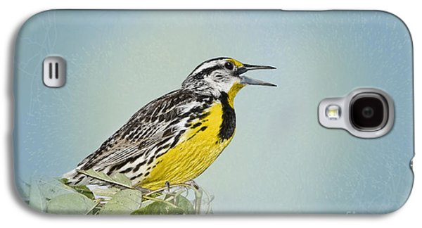 Western Meadowlark Galaxy S4 Case by Betty LaRue