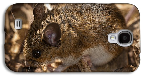 White-footed Mouse Galaxy S4 Case