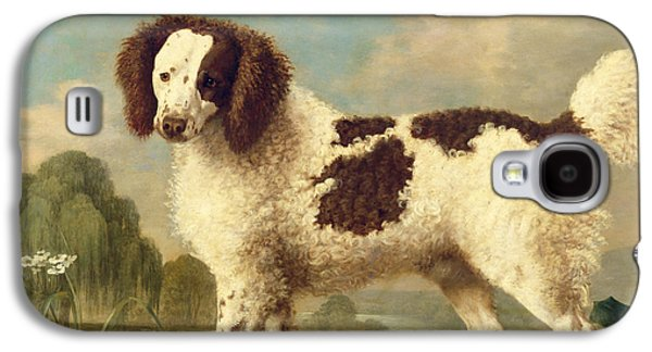 Brown And White Norfolk Or Water Spaniel Galaxy S4 Case by George Stubbs