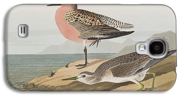 Red-breasted Sandpiper  Galaxy S4 Case by John James Audubon