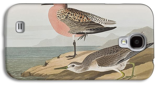 Red-breasted Sandpiper  Galaxy S4 Case