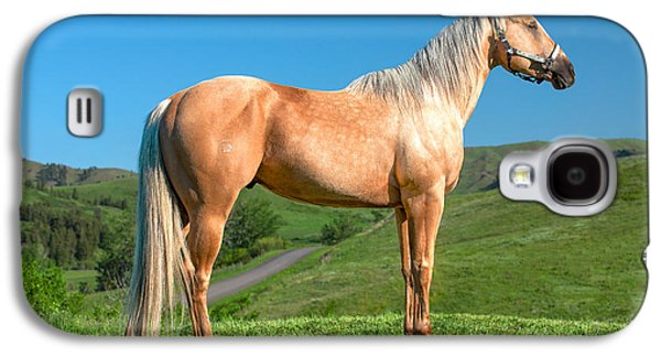 A Horse Named Shaker Galaxy S4 Case by Todd Klassy