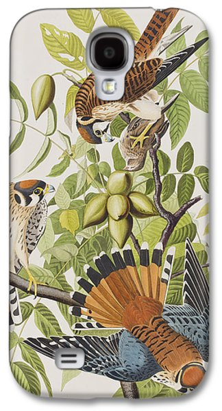 American Sparrow Hawk Galaxy S4 Case by John James Audubon