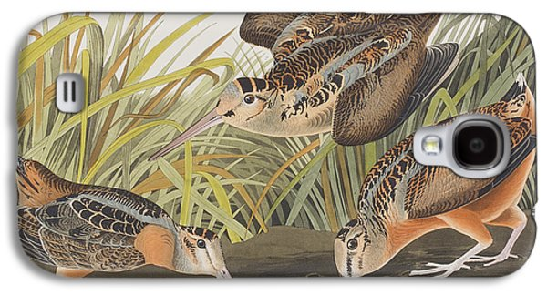 American Woodcock Galaxy S4 Case by John James Audubon