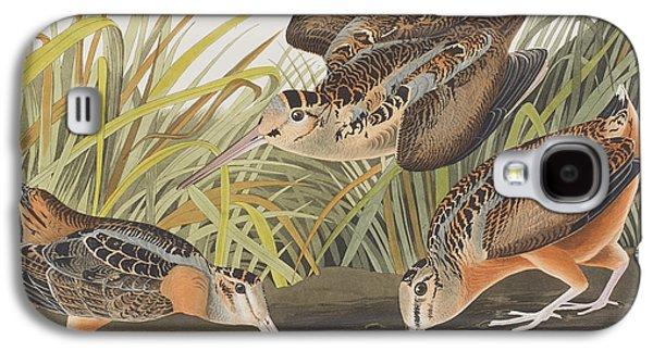 Woodcock Galaxy S4 Case - American Woodcock by John James Audubon