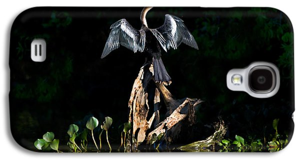 Anhinga Anhinga Anhinga, Pantanal Galaxy S4 Case by Panoramic Images