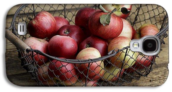 Apples Galaxy S4 Case by Nailia Schwarz