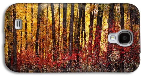 Autumn Light Galaxy S4 Case by Leland D Howard