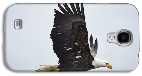 Bald Eagle Galaxy S4 Case