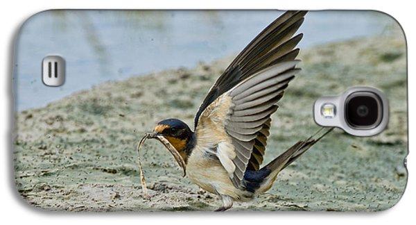 Barn Swallow Galaxy S4 Case by Anthony Mercieca