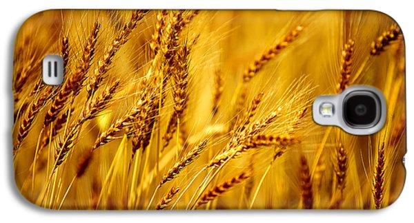 Bearded Barley Galaxy S4 Case