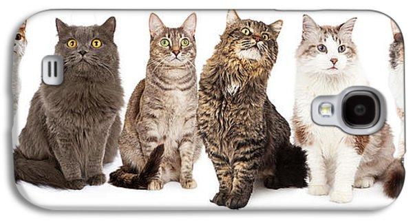 Beautiful Grey Domestic Shorthair Cat Laying Galaxy S4 Case by Susan Schmitz