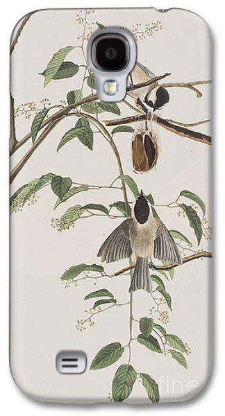 Titmouse Galaxy S4 Case - Black Capped Titmouse by John James Audubon