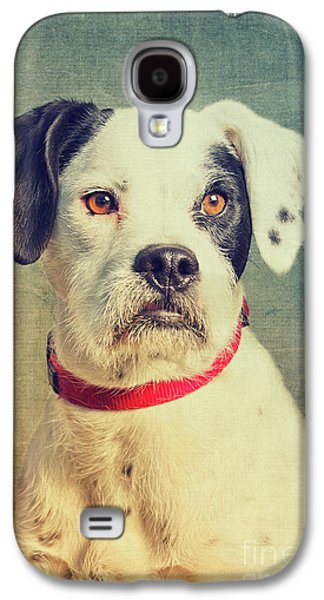 Boxer-schnautzer-mix Galaxy S4 Case by Angela Doelling AD DESIGN Photo and PhotoArt