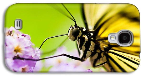 Butterfly Galaxy S4 Case by Sebastian Musial