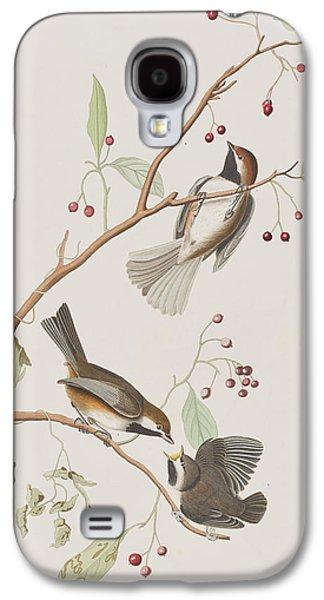 Titmouse Galaxy S4 Case - Canadian Titmouse by John James Audubon