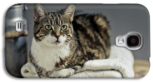 Cat Portrait Galaxy S4 Case by Nailia Schwarz