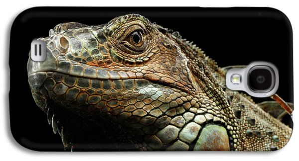 Closeup Green Iguana Isolated On Black Background Galaxy S4 Case by Sergey Taran