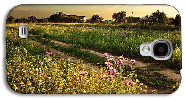 Countryside Landscape Galaxy S4 Case