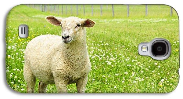 Cute Young Sheep Galaxy S4 Case by Elena Elisseeva