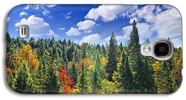 Fall Forest In Sunshine Galaxy S4 Case by Elena Elisseeva