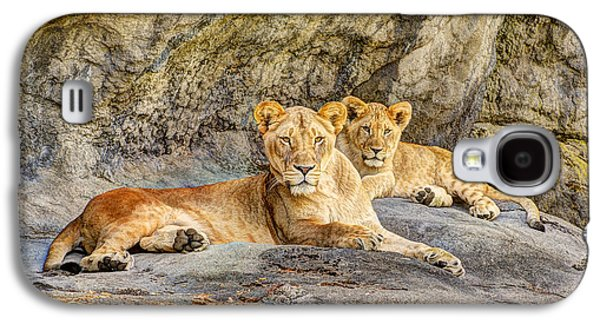 Female Lion And Cub Hdr Galaxy S4 Case