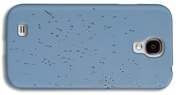 Flock Of Beautiful Migratory Lapwing Birds In Clear Winter Sky Galaxy S4 Case
