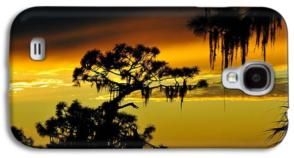 Central Florida Sunset Galaxy S4 Case by David Lee Thompson